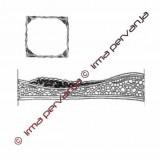 412703 - Insertion - 22 cm