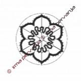 130201 - Daffodil - 6 cm