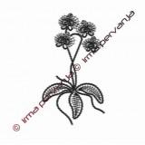 508902 - Orchidea- 20 cm