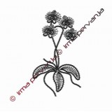 508902 - Orquídea- 20 cm